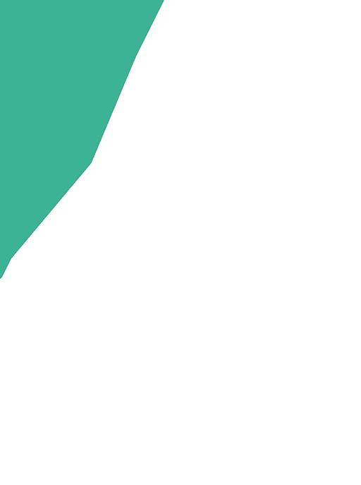 Konseptikoti logo